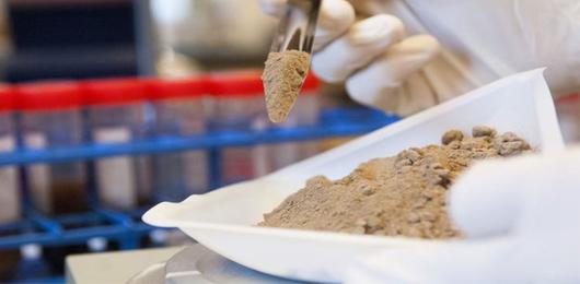 Polvere eri, antibiotico diventerai