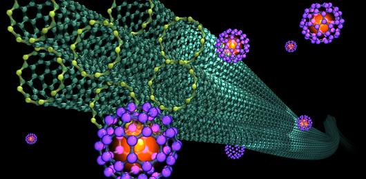Per il futuro l'IBM punta sui nanotubi