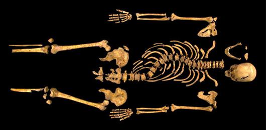 Il genoma di Riccardo III