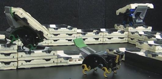 Il termitaio robot