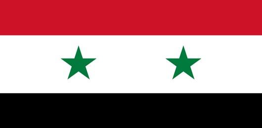 Il vertice di Marrakech e il destino della Siria