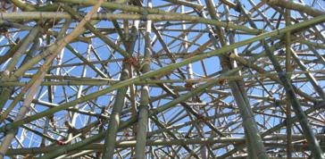 Al Macro Testaccio di Roma Big bambu