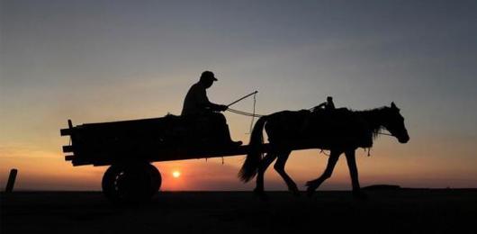 Il cavallo cambiò l'uomo, e viceversa