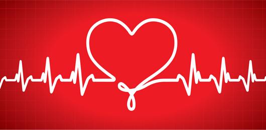 La proteina che ripara il cuore