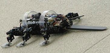 Robot, favorevoli o contrari?
