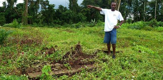 La svolta verde della Liberia