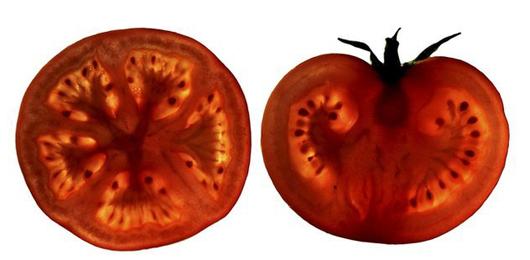 Un pomodoro al giorno