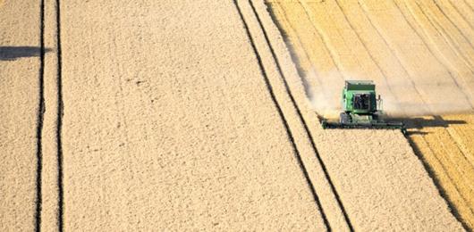 Il cartello dei fertilizzanti minaccia l'agricoltura globale