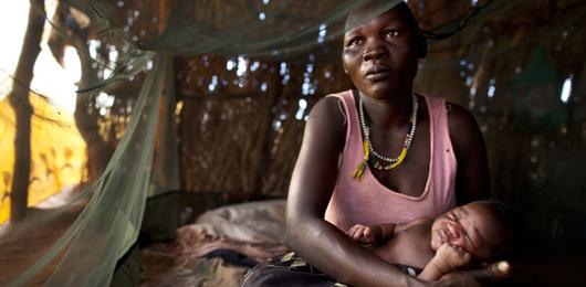 Una zanzara sterile per combattere la malaria