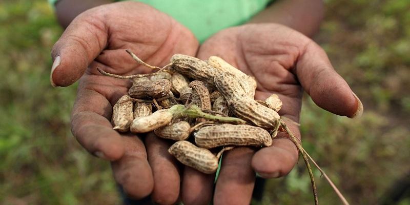 La lotta ai cambiamenti climatici contrasta fame e povertà