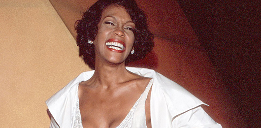 L'eredità di Whitney Houston finisce all'asta
