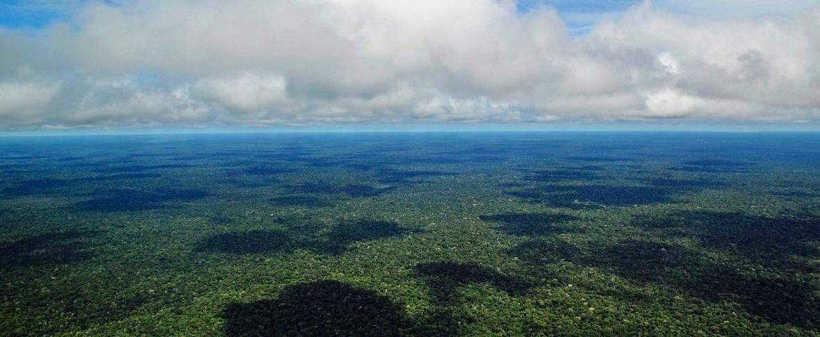 Amazzonia, rubinetto del pianeta