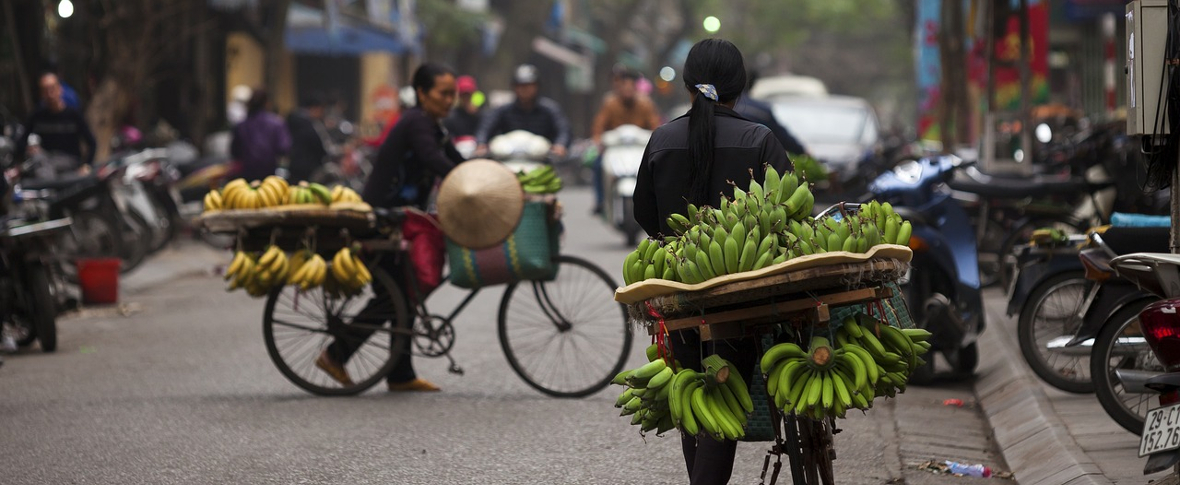 Quale futuro per il Vietnam dopo Tran Dai Quang?