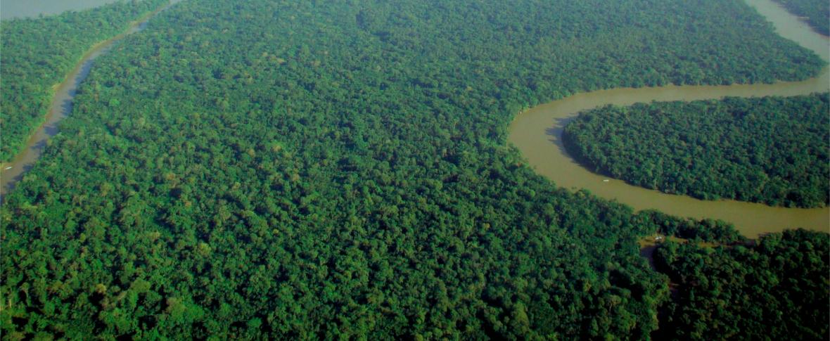 Fiamme in Amazzonia