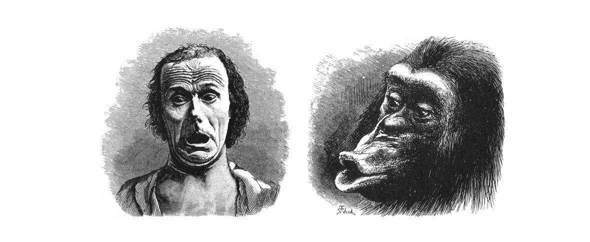L'ansia come prezzo evolutivo dell'intelligenza