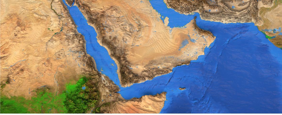 I Paesi del Golfo nella crisi tra Stati Uniti e Iran