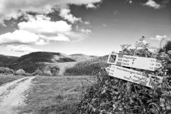 POGGIODOMO - Orizzonte panoramico