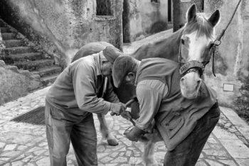 STAITI - La ferratura del cavallo