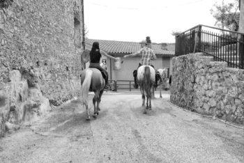 Cavalli a ridosso del centro storico